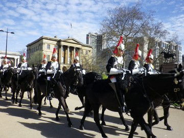 Buckingham Palace Horse Guards